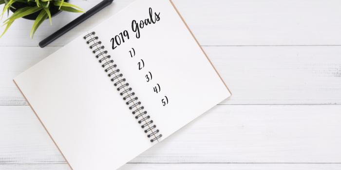 2019 Goals (1)