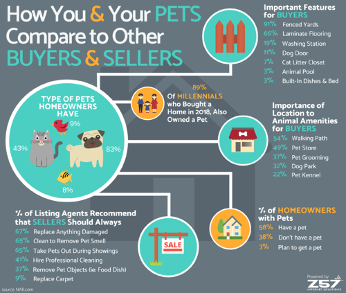 Z57 - How You and Your PETS Compare to Other BUYERS and SELLERS infographic